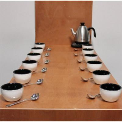 Rhinowares Cupping Kit (24 Bowls/ 24 Spoons) + FREE: Brewista Stout Spout Variable Temperature Kettle - The Concentrated Cup