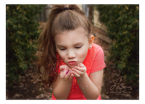 Glitter Overlays and Photoshop Actions