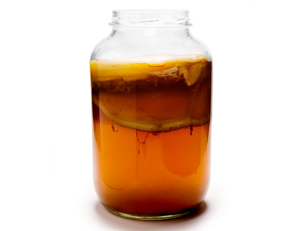 1 Gallon Glass Kombucha Brew Jar