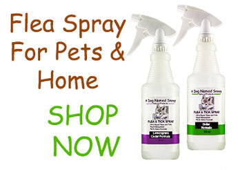 Natural Flea Control For Pets & Home