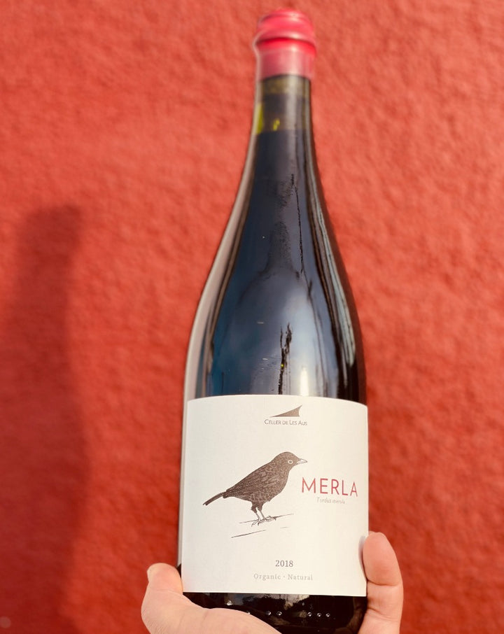 100% Mataró (Monastrell) Alella, Spain.  Woman winemaker - Mireia Pujol-Busquets. All natural. Organic. Freshly baked raspberry bread pudding + herbs. Roasted chocolate. A dry forest. Pistachio + cherry. Leather + dirt. Slight spice + everything nice.