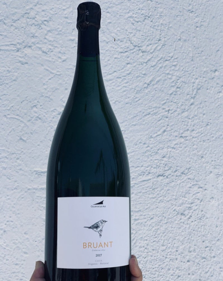 "100% Pansa Blanca Catalonia, Spain.  Woman winemaker - Mireia Pujol-Busquets. All natural. Magnum (2 bottles). Hard granite and soft bubbles. Papaya and green bananas. Sea breezes. The wine Iggy Pop had in mind when he wrote ""Lust For Life"" (we imagine)."