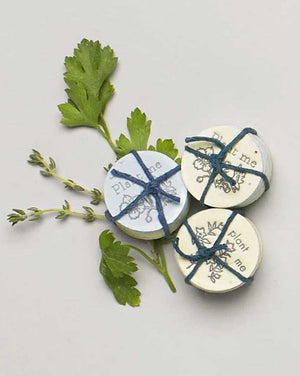 Lovewild Parsley & Oregeno Coins
