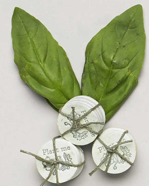 Lovewild Basil and Mint Coins