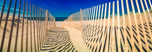 Color infrared panorama of Sand Fence at Sandy Neck Beach, Barnstable
