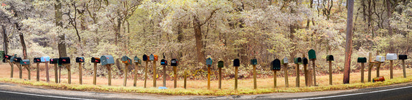 Color infrared panorama of Mailboxes, Chilmark, Martha's Vineyard