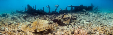 Underwater panorama of the Wreck of the City of Washington #1, Key Largo