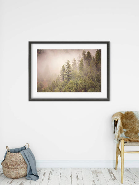 Pine Forest in the Fog Print, Mountain Art, Physical Print of Trees