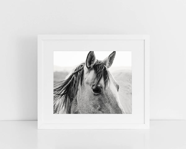 Windy Day Horse Photograph in Black and White, Country Western Photography