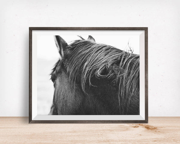 Physical Photo Print, Horse Photography in Black and White, Rustic Horse