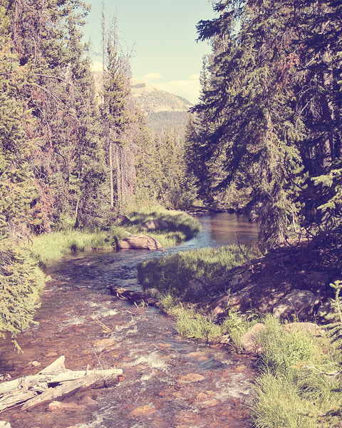 Vintage Style River Photograph, Forest Photography, Vintage Landscape, Physical Print