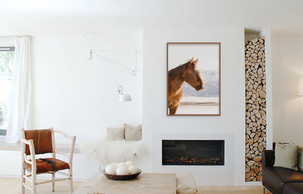 Color Horse Print, Western Horse Photograph, Rustic Home Decor Wall Art