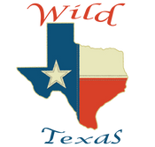 Wild Texas Boutique