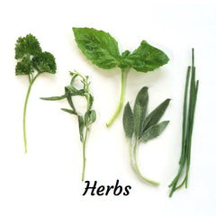 Organivores Herbs Recipes
