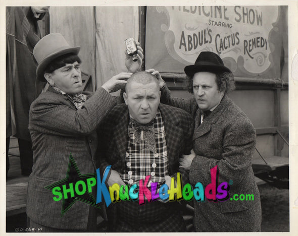 Three Stooges Cactus Remedy 8X10: #15