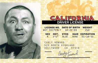 The Three Stooges Driver License: Curly Style - READY TO SHIP