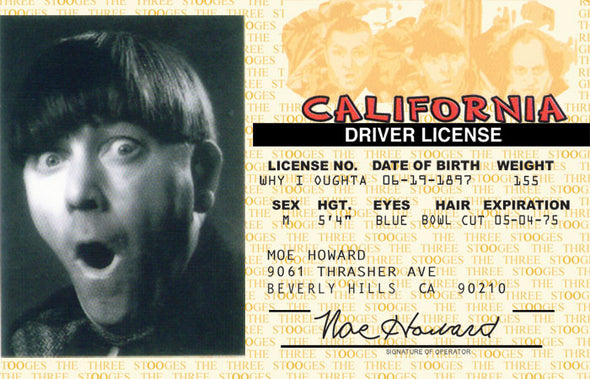 The Three Stooges Driver License: Moe Style - READY TO SHIP