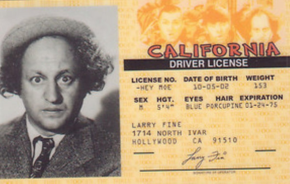 The Three Stooges Driver License: Larry Style - READY TO SHIP