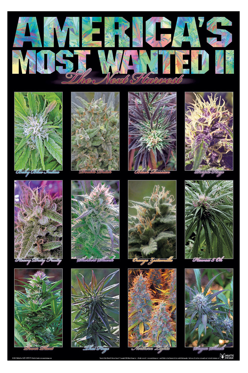 "Americas Most Wanted Weed Beach Towel (28"" x 58"")"
