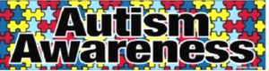 Autism Awareness Bumper Car Magnet
