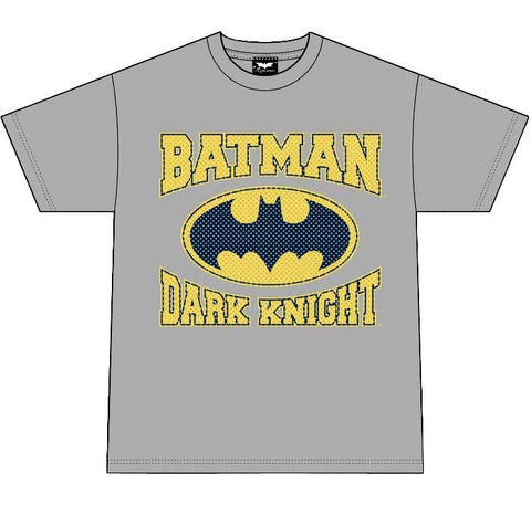 Batman Joker Dark Knight T-Shirt (Grey) Medium