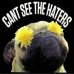 Can't See The Haters Funny Pug Ladies T-shirt