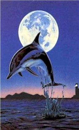 Dolphin and Moon Towel
