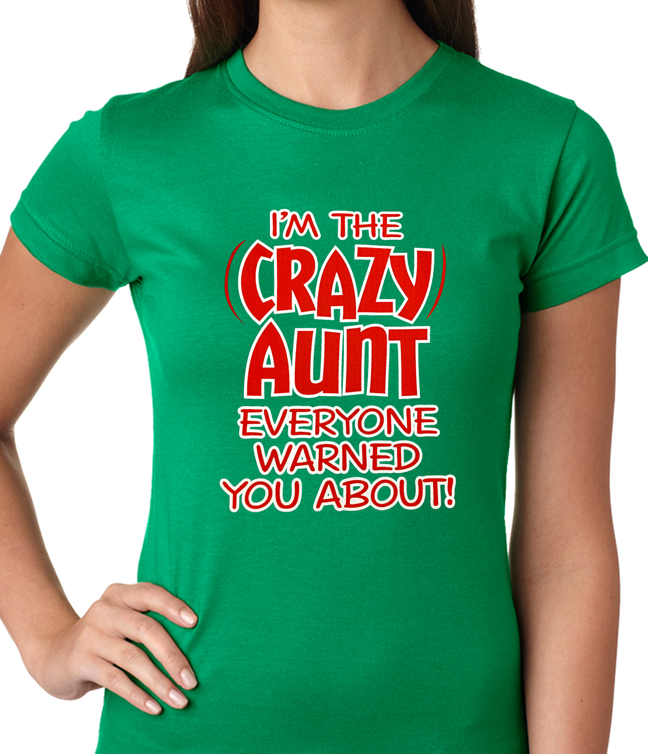 I'm The Crazy Aunt Everyone Warned You About Ladies T-shirt
