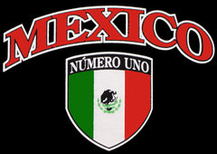 Mexico International Hoodie