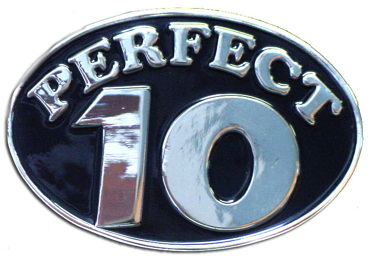 Perfect 10 Belt Buckle With FREE Belt