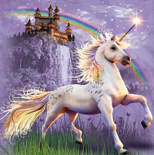 Unicorn, Castle and Rainbow T-shirt
