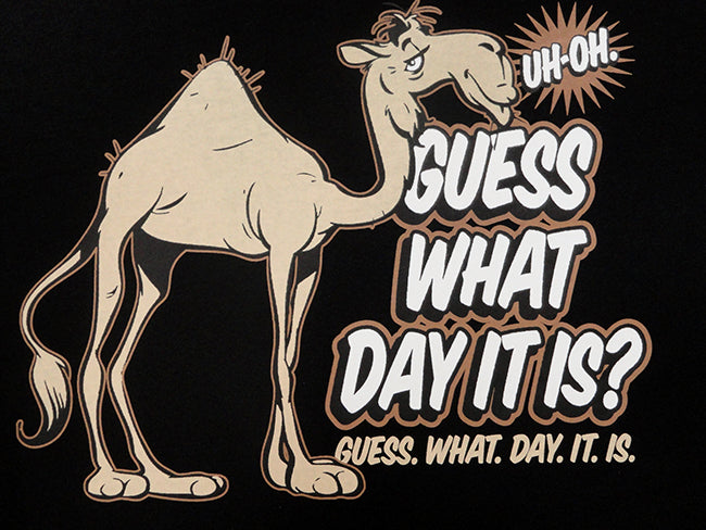 Bewild Guess What Day It Is? Camel Hump Day Men's T-Shirt