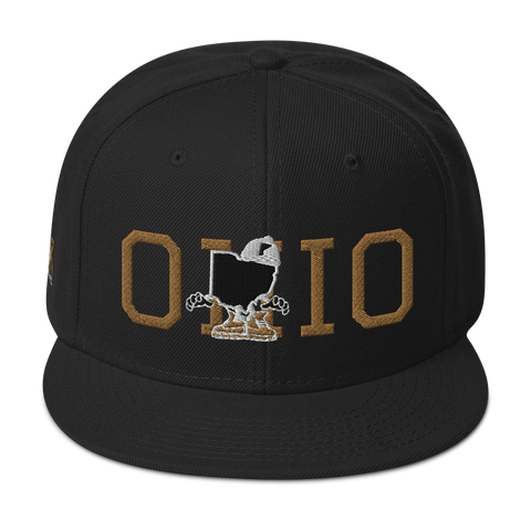 Freshbrand x WIR Ohio Guy Snapback Hat