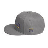 317 Split Stateside LTD Snapback Hat