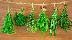 Summer herbs to plant in New Zealand - when it stops raining!