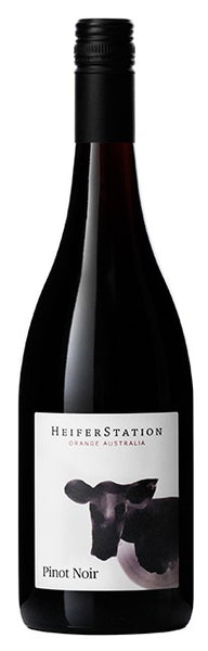 Heifer Station Pinot Noir 2013, wine bottle + cows head