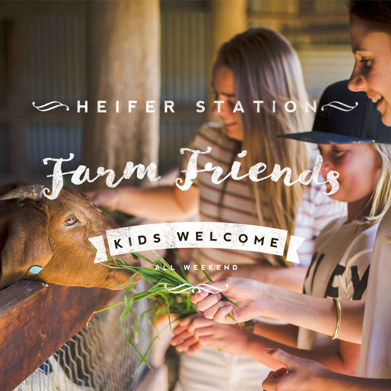 Kids petting Zoo Heifer Station