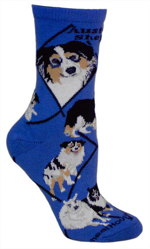 Australian Shepherd Socks on Blue - Made in USA - Dog Footwear