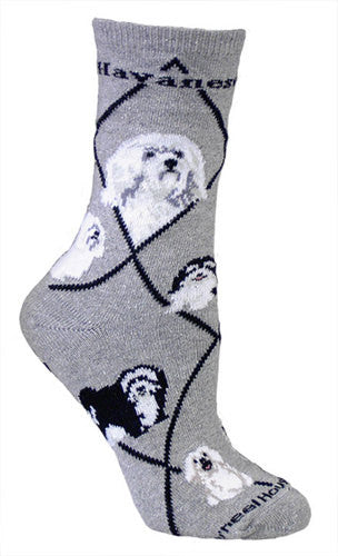Havanese on Gray - Made in USA - Dog Socks