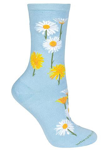lw-504-daisies_large