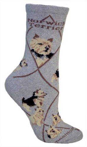 Norwich Terrier on gray - Made in USA - Dog Socks