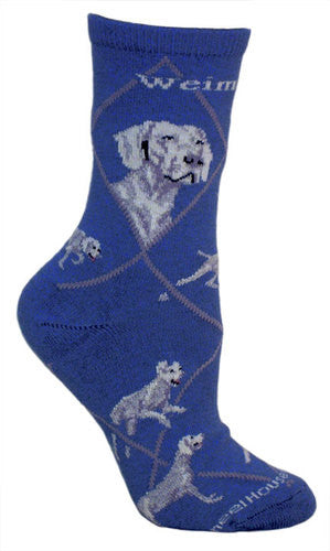 Weimaraner on blue - Made in USA - Dog Socks