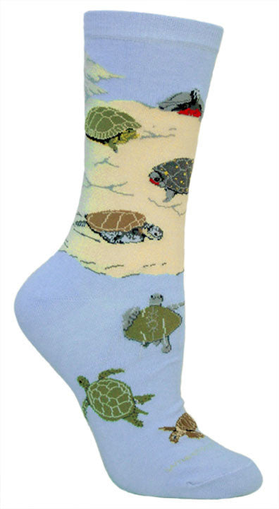 sea turtles on light blue