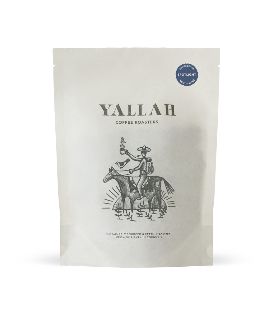 SPOTLIGHT SERIES #2 // DAGOBERTO, single origin coffee, Yallah Coffee, sustainable, sustainably roasted