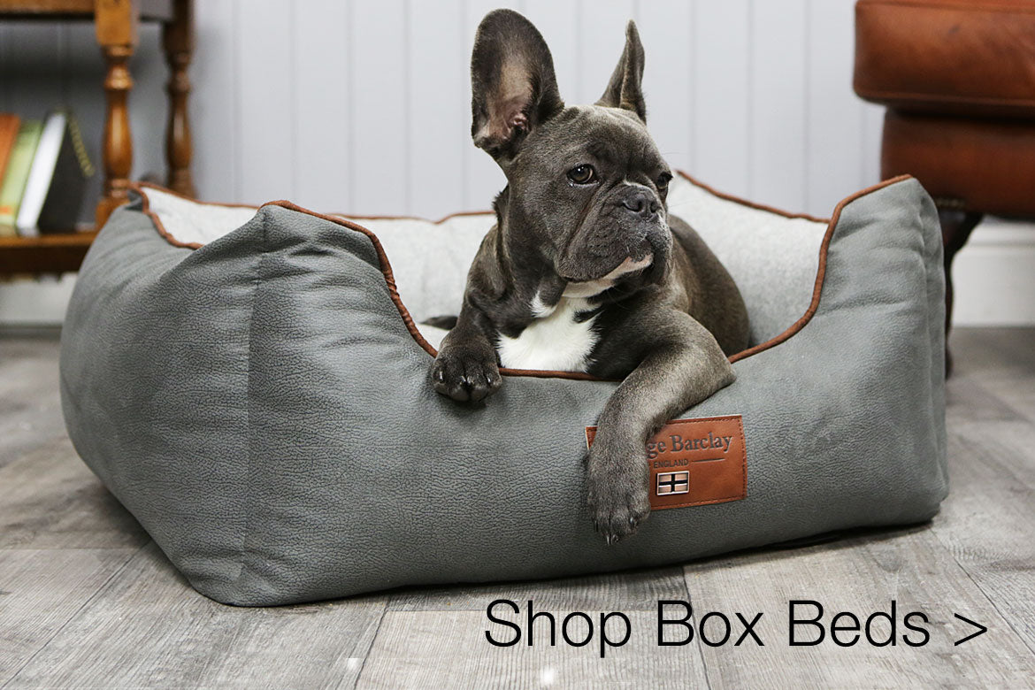 Picture of: Dog Beds George Barclay The Home Of Luxury Orthopaedic Dog Beds