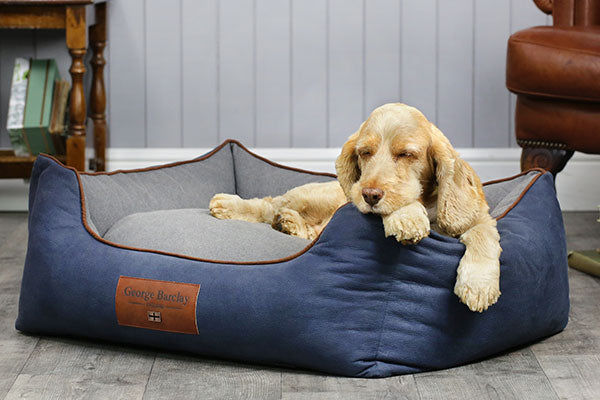 Small and Medium Breed Dog Beds