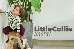 Little Collie 2016 F/W