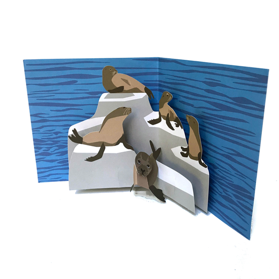 Sea Lion Pop Up 3D card