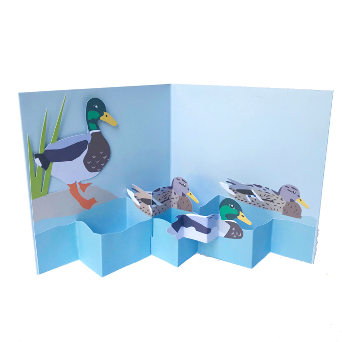 Ducks On the Water Pop Up 3D card