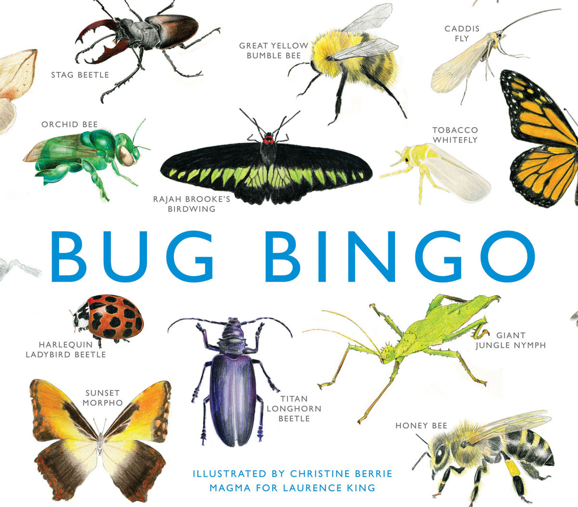 Bug Bingo family game